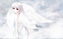 White-Clarity_Hofodomo01_-edit779.jpg (1440 x 900) - 115.19 KB