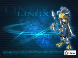 linux-2.jpg (1024 x 768) - 347.63 KB